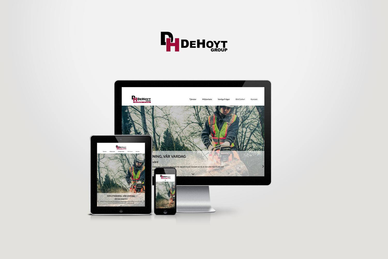 portfolio_dehoyt